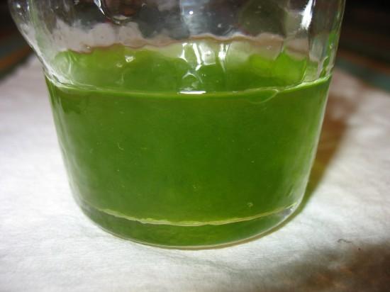 Seeding algae for shrimp tank