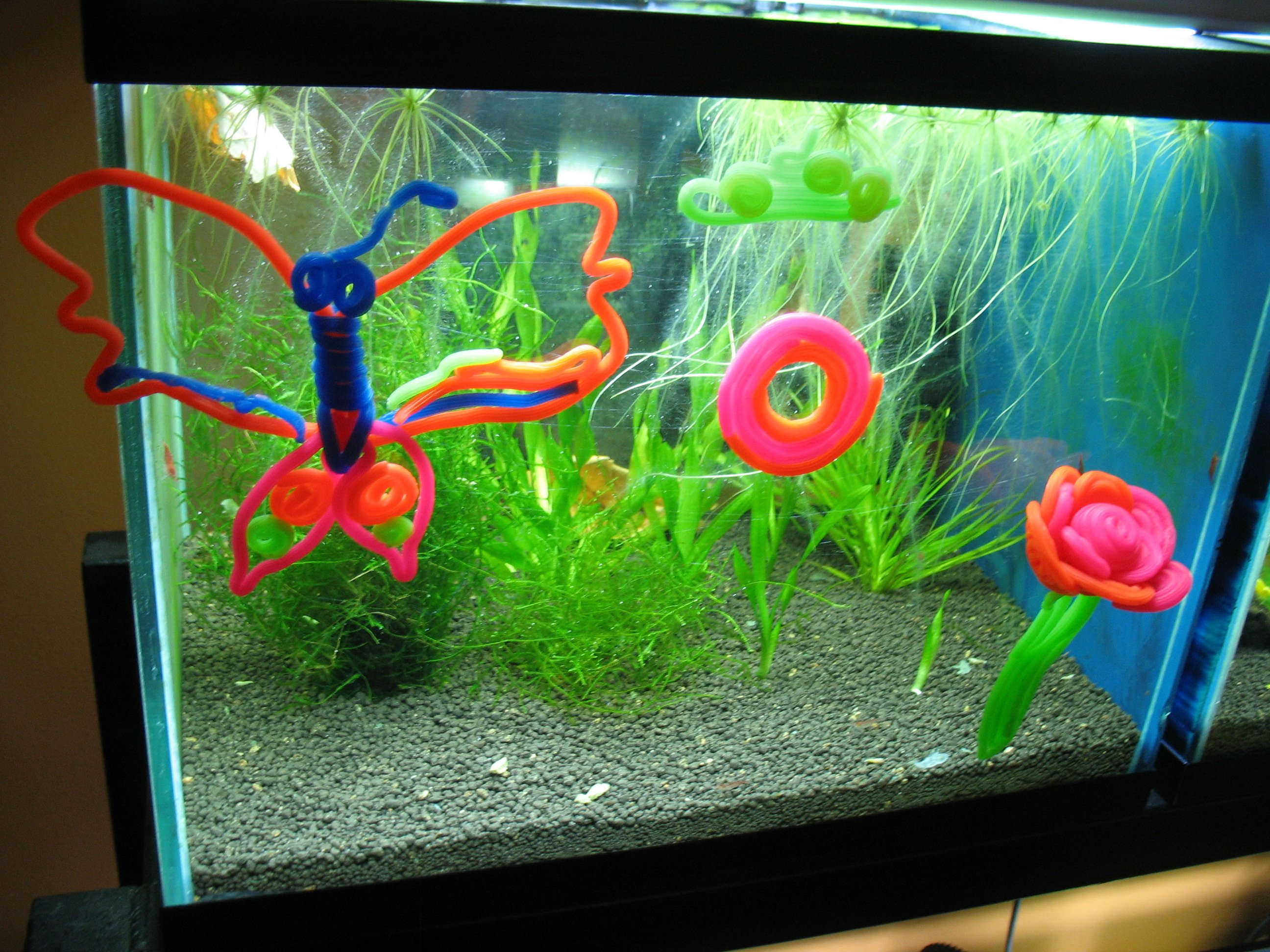 Let your kids decorate your aquariums shrimp tank for Aquarium decoration ideas