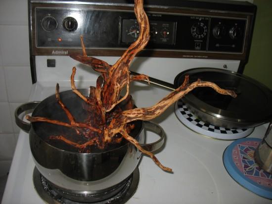Shrimp-Tank.com Boiling driftwood