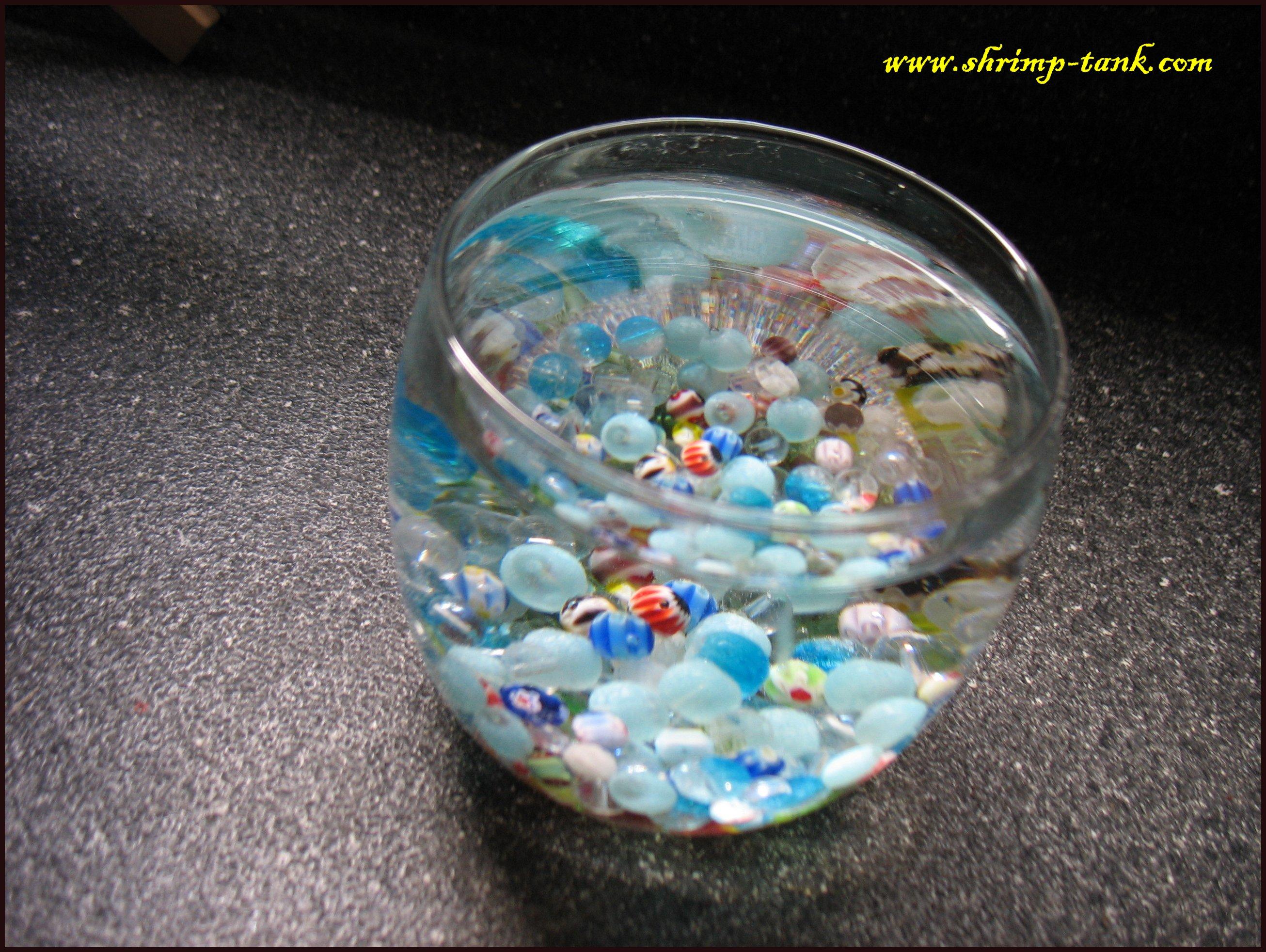 Planted glass tank kids version shrimp tank for Fish tank marbles