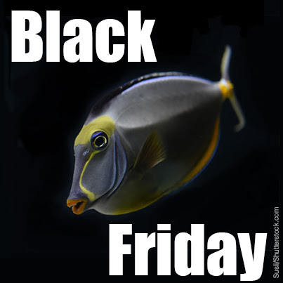 Tropical Fish Hobbyist Magazine Black Friday