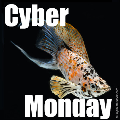 Tropical Fish Hobbyist Magazine Cyber Monday